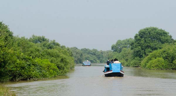 7 Nights 8 Days Odisha Tour Packages