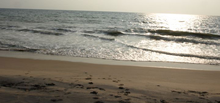 Most gorgeous stretches of Beaches in Odisha